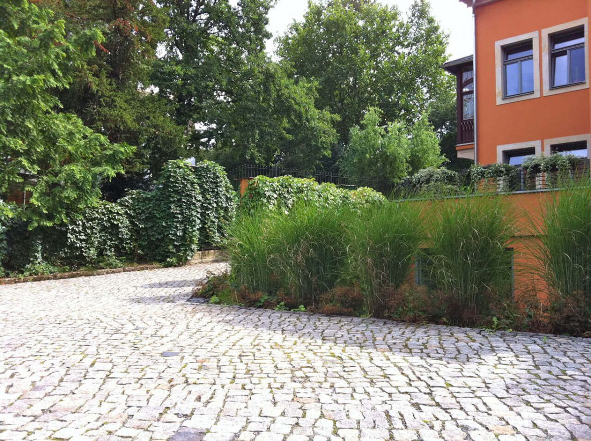 Privatgarten B in Pirna